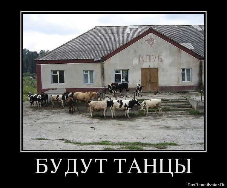 1362150428_64850946_budut-tantsyi