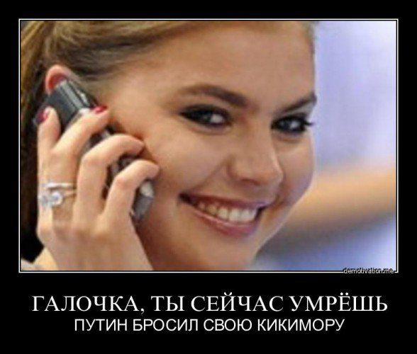 1370968003_pes-razvelsa-3