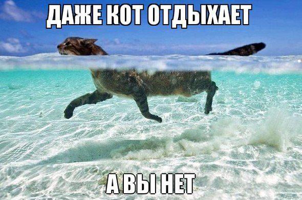 1372786183_ysq8hb9zyqs