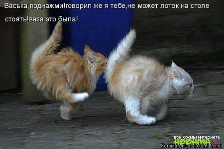 1420914746_hoohma_1679-5