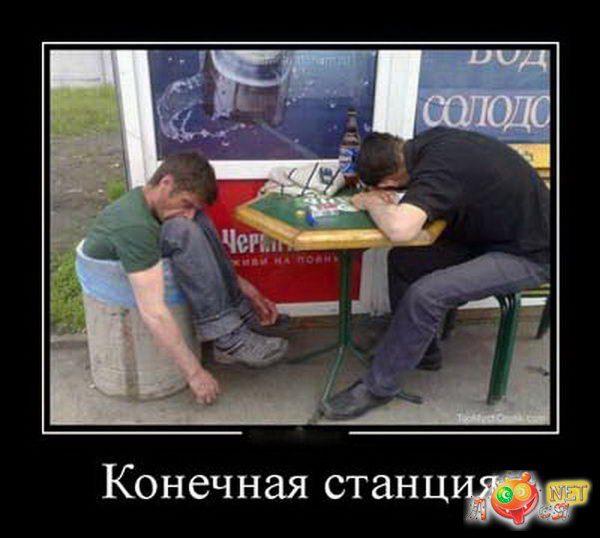 1437488534_smeshnye-foto-alkashey-losya.net-97128