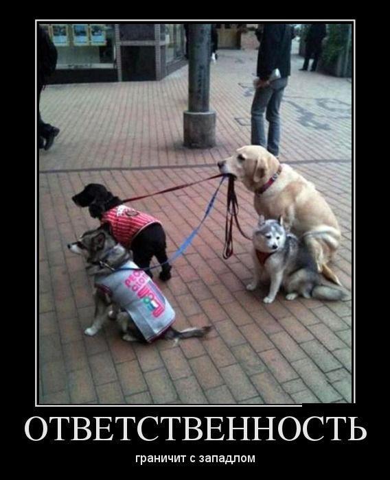 1480788711_demotivatory-na-zlobu-dnya_xaxa-net-ru-11