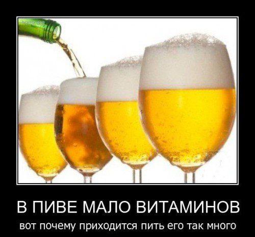 фото пиво приколы