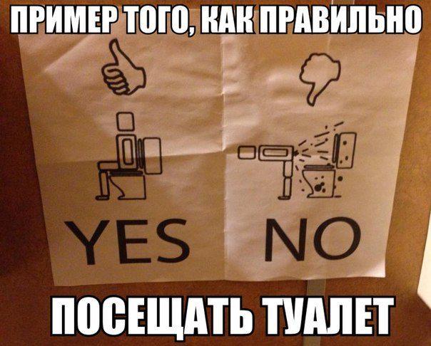 Картинки по запросу смешные картинки про туалет