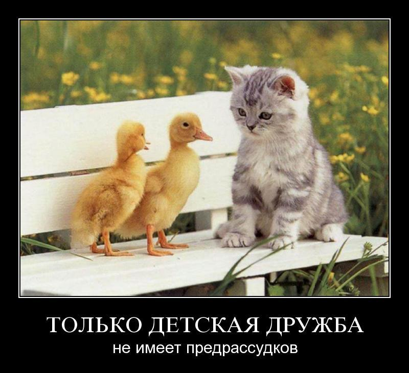 Predrassudki_protiv