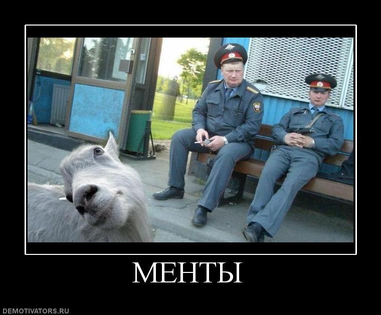 Prikoly-pro-mentov2