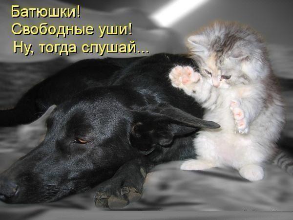 Pwi4s_mncsk