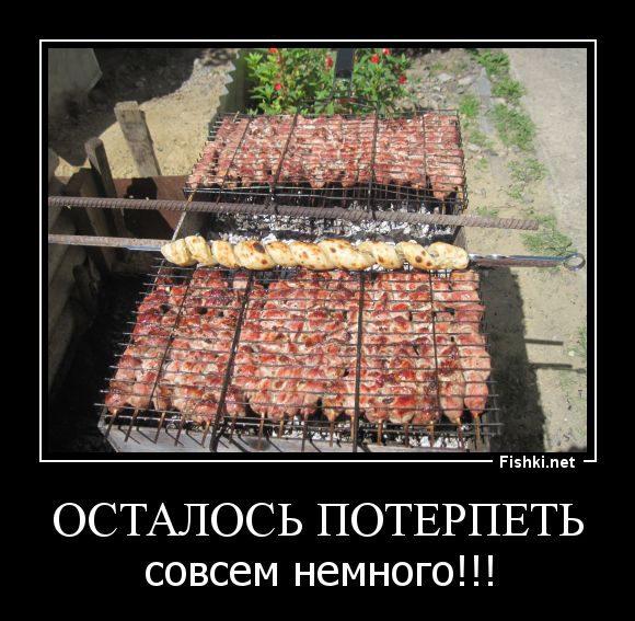 Русские на отдыхе 44 фото  Триникси