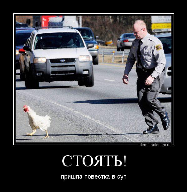 demotivatorium_ru_stojat__43631