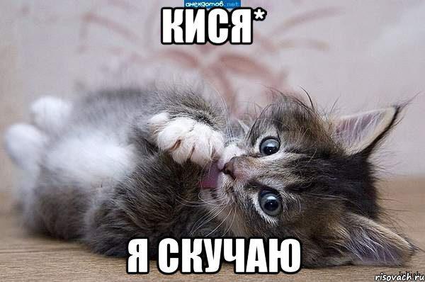 kote_8353033_orig_