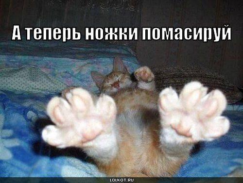 nozhki-_1267324618
