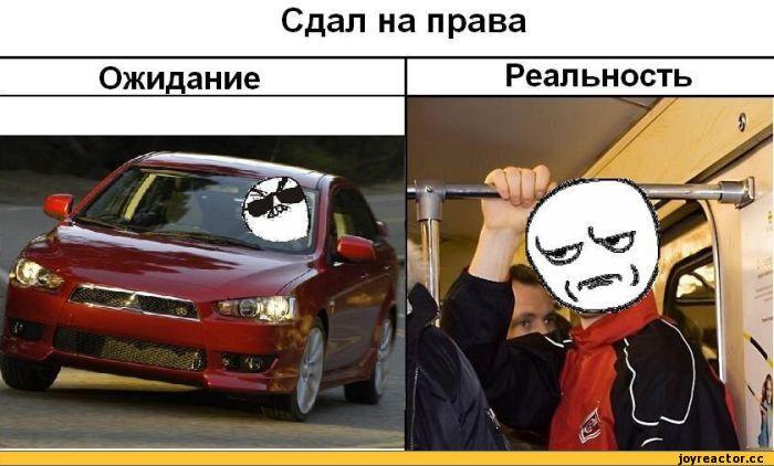 права-водитель-общественный-транспорт-ожидание-vs-реальность-136482