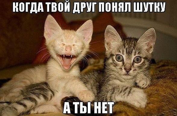 прикольчик_4