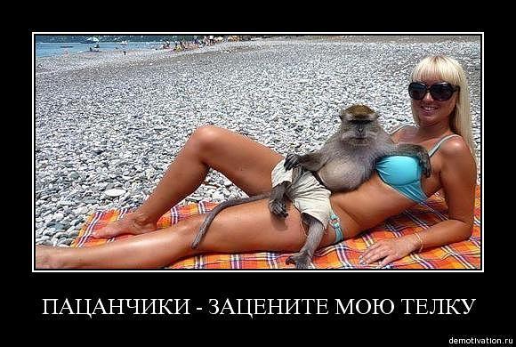 smeshnie_kartinki_1369655651270520131628