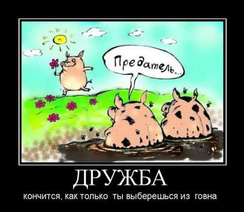statusy_o_druzhbe_02
