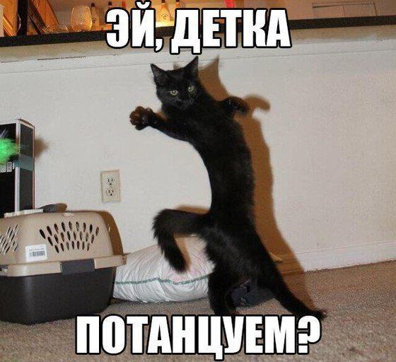 tancuem-vse-list