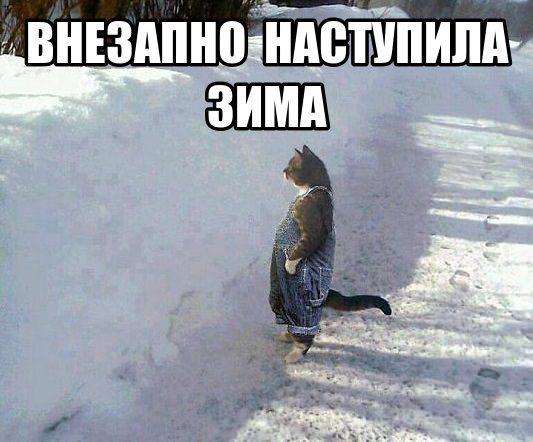 vnezapno-zima-kot