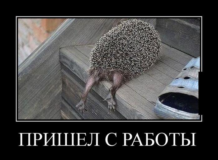 http://bipbap.ru/wp-content/uploads/2017/02/08db994041c61946dd8d7e5cec436c74.jpg