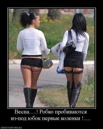 1330539854_715605_vesna-robko-probivayutsya-iz-pod-yubok-pervyie-kolenki-