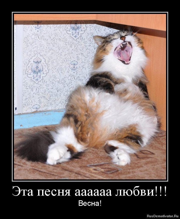 1333627694-yeta-pesnya-aaaaaa-lyubvi