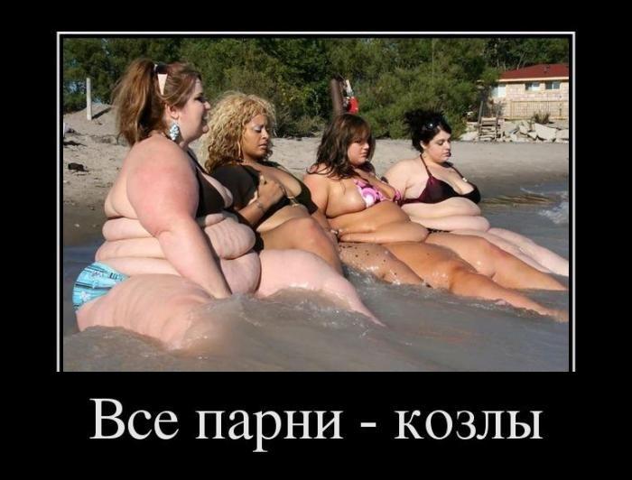 Приколы про девушек жирных фото 513-135