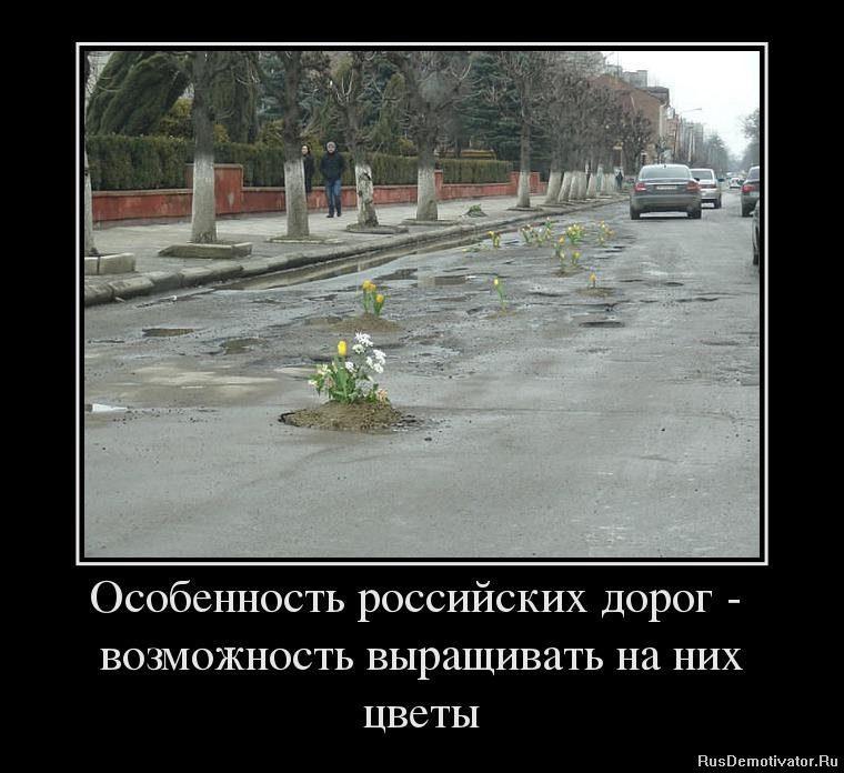 1371133489_23956169_osobennost-rossijskih-dorog-vozmozhnost-vyiraschivat-na-nih-tsvetyi