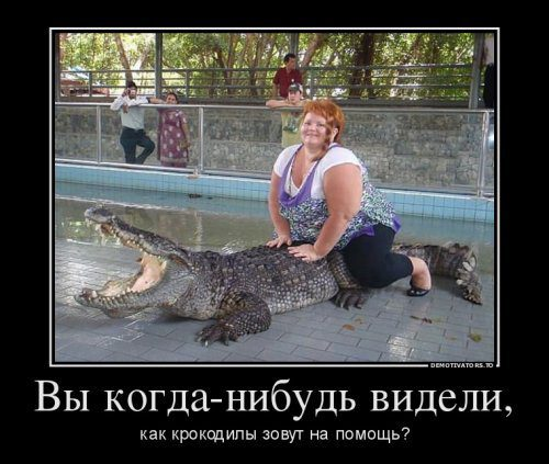 http://bipbap.ru/wp-content/uploads/2017/02/1404658018_1-demotivatory-xaxanet-20140706.jpg