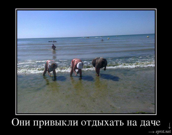 Картинки по запросу смешные картинки про отдых на море