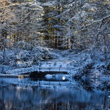 Прикольные картинки про зиму красивые (100 фото)