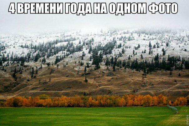 201404140033-chetyre-vremeni-goda-na-odnom-foto-kashamalasha-com