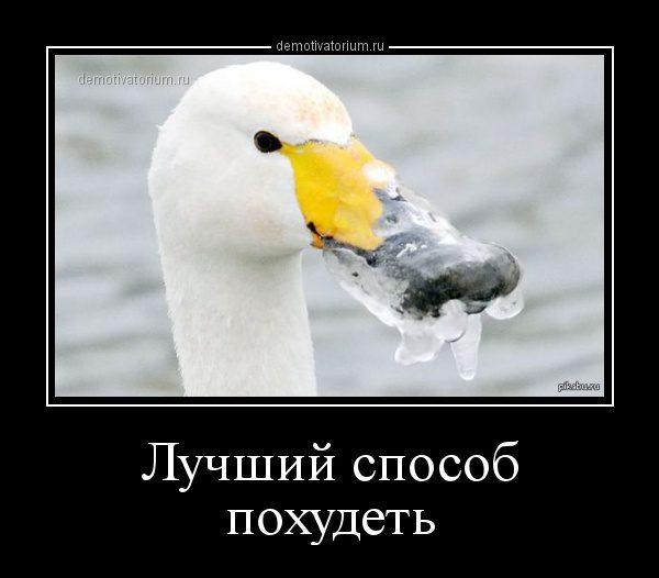 demotivatorium_ru_luchshij_sposob_pohudet_71329