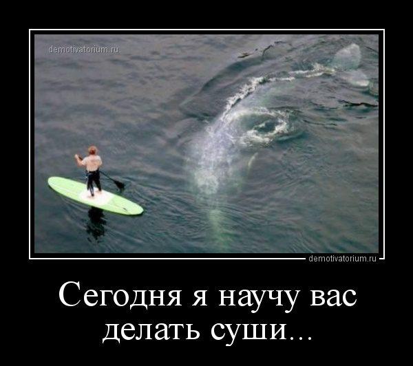 demotivatorium_ru_segodnja_ja_nauchu_vas_delat_sushi_48375