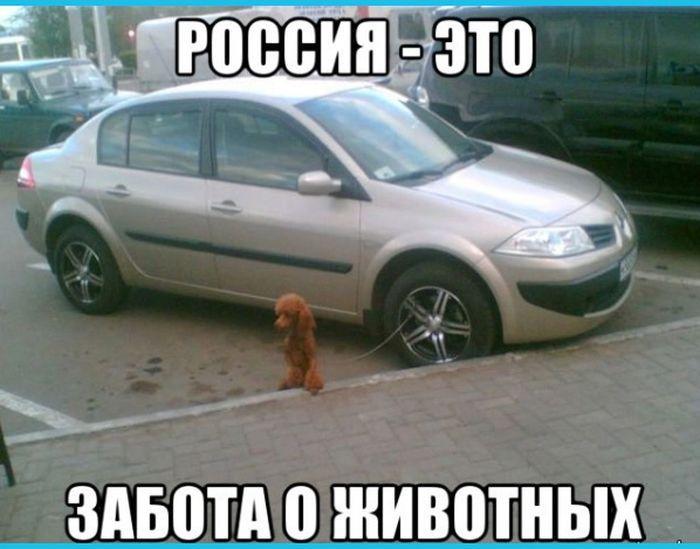 rossia-0011