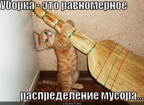uborka_1305088589