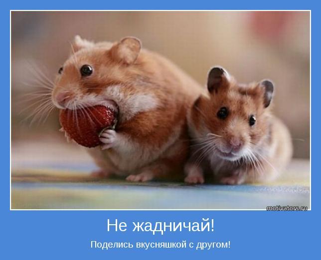 Картинки про дружбу со словами