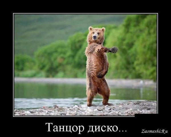 http://bipbap.ru/wp-content/uploads/2017/03/11807-Tancuyushchij-misha.jpg
