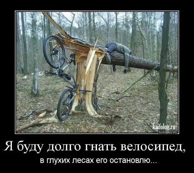 http://bipbap.ru/wp-content/uploads/2017/03/1486782919_014.jpg