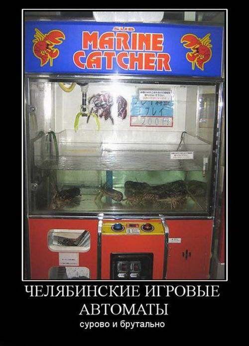 Приколы про игровые автоматы мини игры азартные лягушка