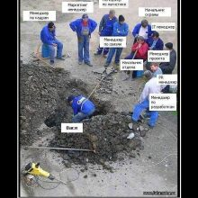 Прикольные картинки про менеджеров (30 фото)