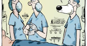 Прикольные картинки про хирургов (27 фото)