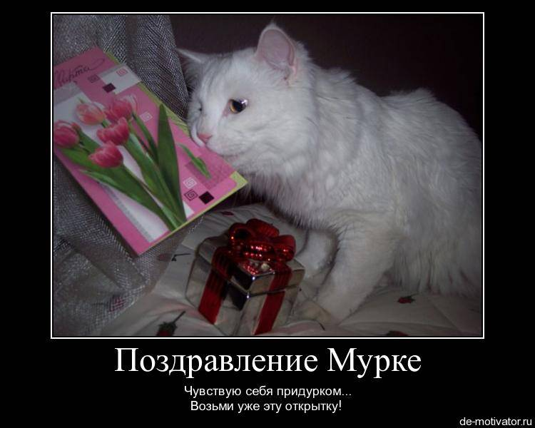 Какой подарок подарить девушке прикольные