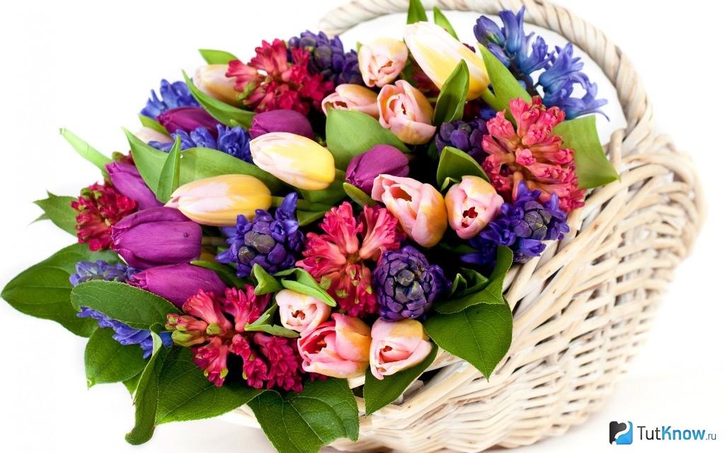 Композиции из живых цветов в корзине: обзор ФОТО! 18