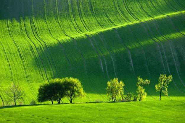 красивые фото природы фото