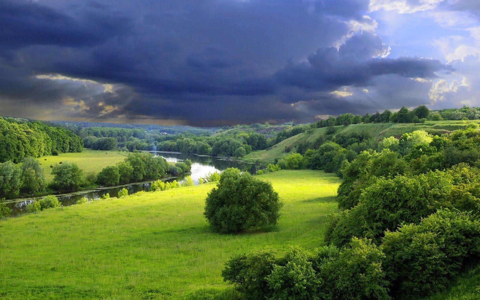 Осень лес река фото