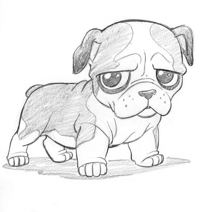 Рисунок карандашом собака лёгкая