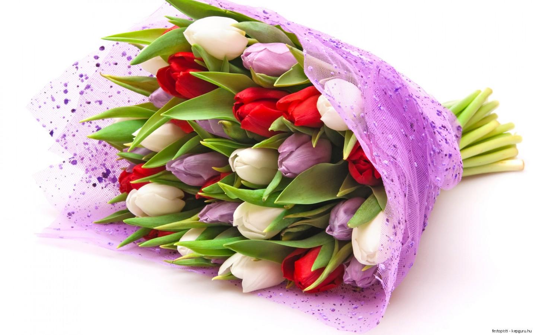 Купить саженцы Розы в Украине недорого почтой Киев