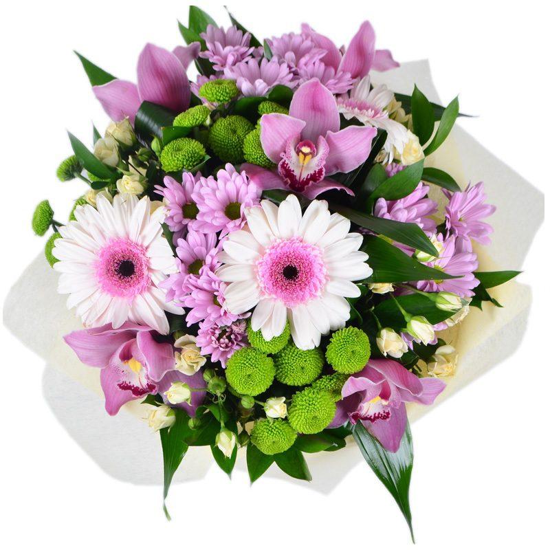 Цветы розы садовые названия и сорта на фото посадка