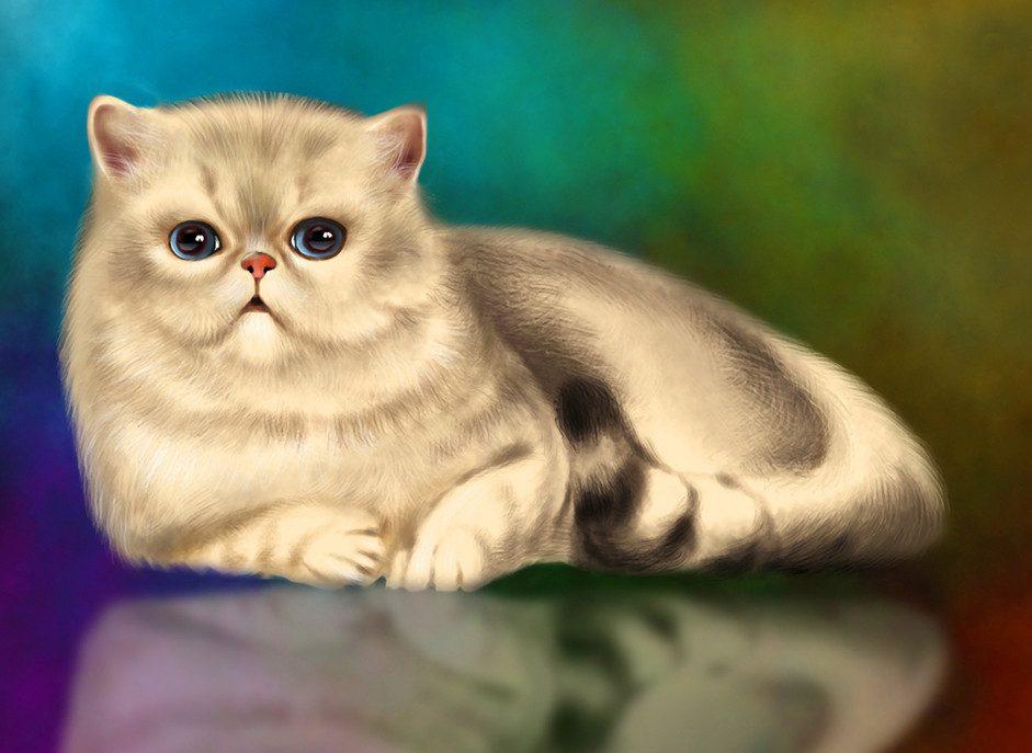 Картинки на рабочий стол кот рыжий