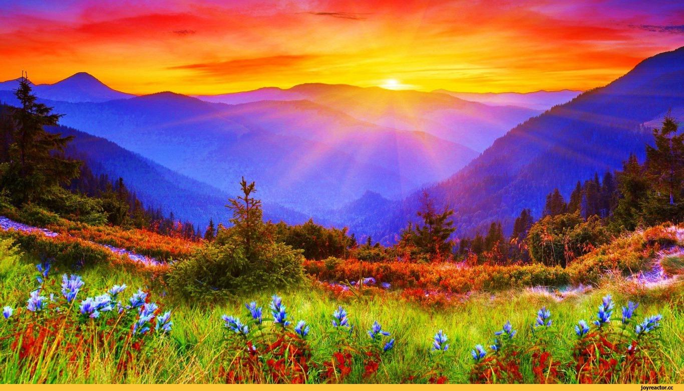 Фотографии красивые пейзажи