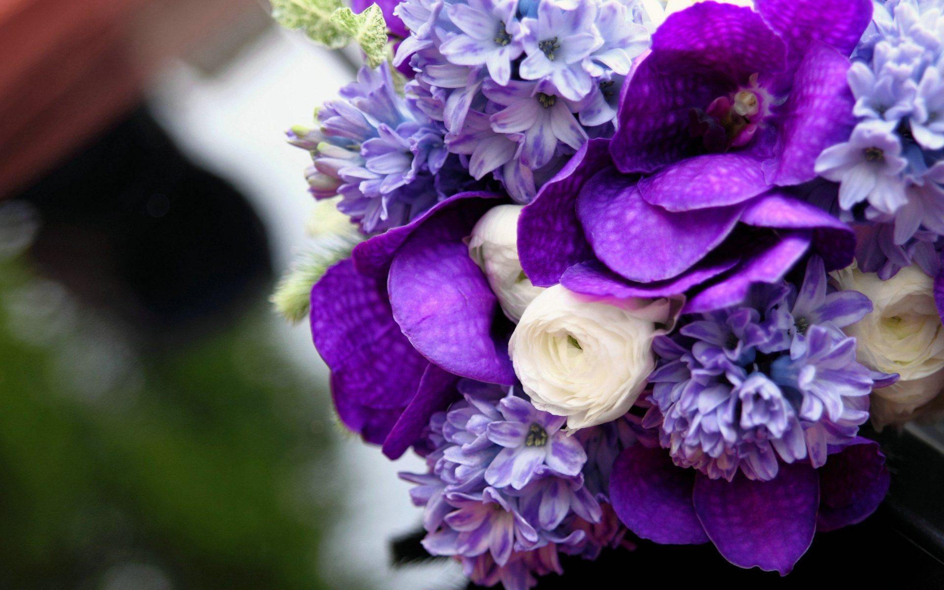 Красивые цветов на рабочий